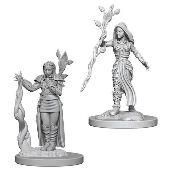 D&D MARVELOUS MINIS: Human Female Druid