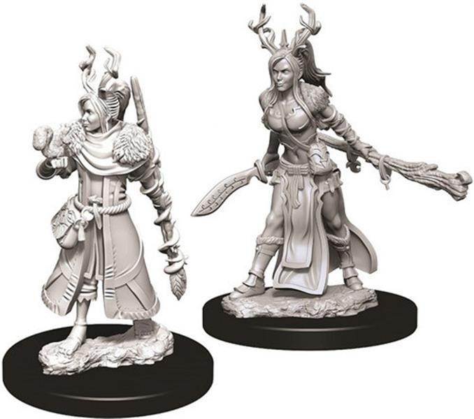 D&D MARVELOUS MINIS: Female Human Druid
