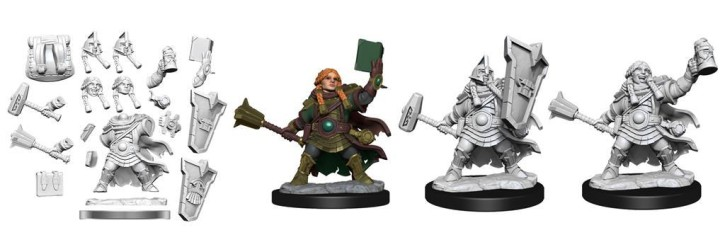 D&D FRAMEWORKS: Dwarf Cleric Female