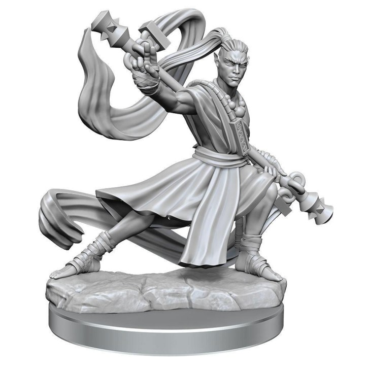 D&D FRAMEWORKS: Elf Monk Male