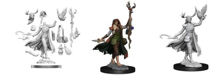 D&D FRAMEWORKS: Human Druid Female